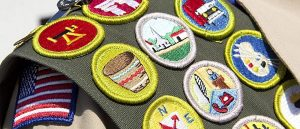Troop 244 Webmaster badge program