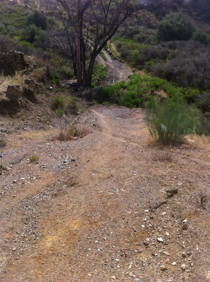 Mountain Trail 2